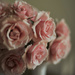 Spray Roses by loweygrace