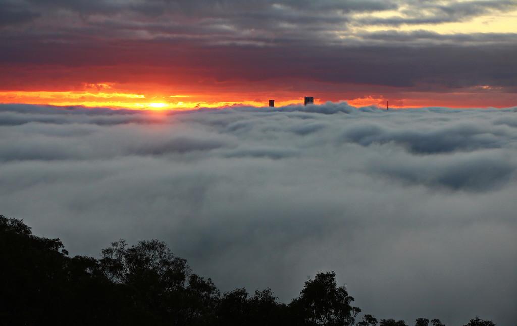 Sunrise on Fog by terryliv
