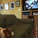 Watching TV?