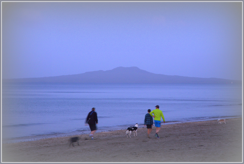 Walking the dogs by dide