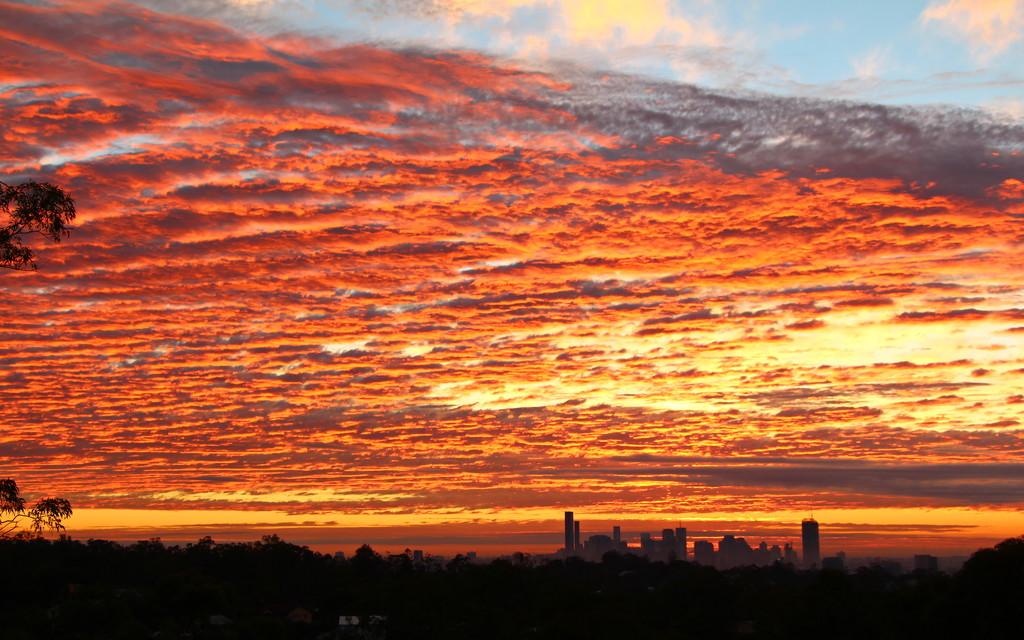 Sunrise Over Brisbane by terryliv