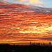 Sunrise Over Brisbane