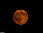 21st Jul 2016 - Full moon