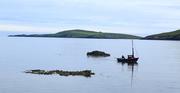 23rd Jul 2016 - Gone Fishing