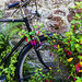 Abandoned Bicycle by megpicatilly