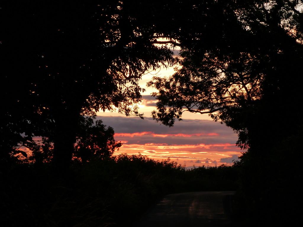 Sun set by shirleybankfarm