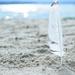 goodbye beach  by jackies365