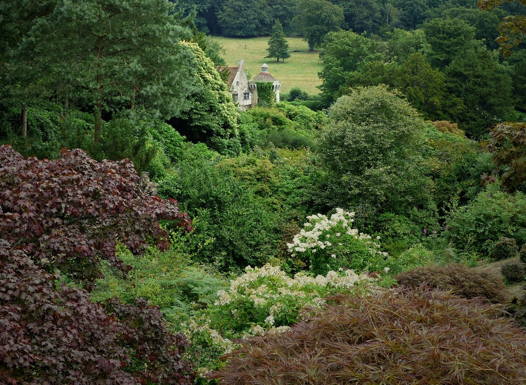 Scotney Old Castle through the woodland. by judithdeacon