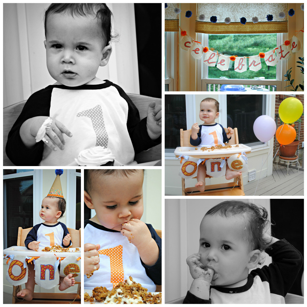 Miles is One!! by alophoto