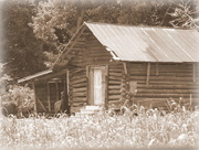 30th Jul 2016 - Vintage Log House