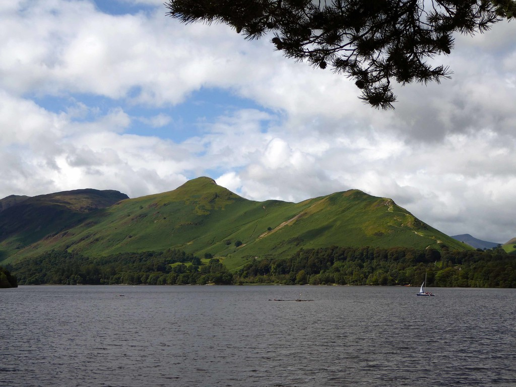 Catbells by cmp