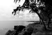 1st Jun 2016 - Hawaii Revisited: Oahu North Shore
