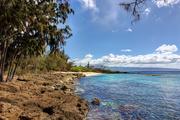 2nd Jun 2016 - Hawaii Revisited: Rocky Oahu Shore
