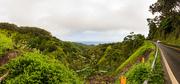 4th Jun 2016 - Hawaii Revisited: Maui, On the Road to Hana