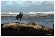 4th Aug 2016 - Horse jump..