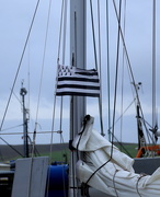 4th Aug 2016 - Harbour Flags #17 - Brittany
