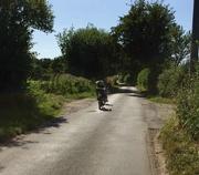 8th Aug 2016 - English Country Lane
