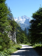 8th Aug 2016 - Alpine Walking