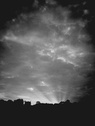 8th Aug 2016 - Black and white