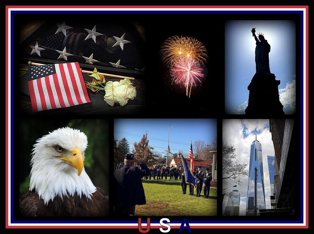 My favorite country - USA! by homeschoolmom