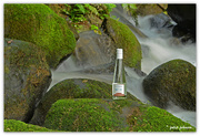 9th Aug 2016 - Product Photography .. Pure New Zealand Spring Water...