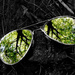 Reflection in broken glasses! by fayefaye