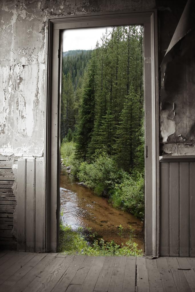 greendoor by blueberry1222