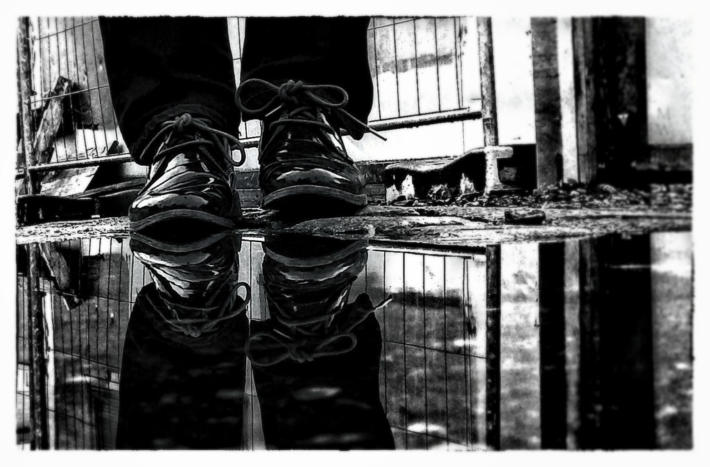 2016-08-10 reflection by mona65