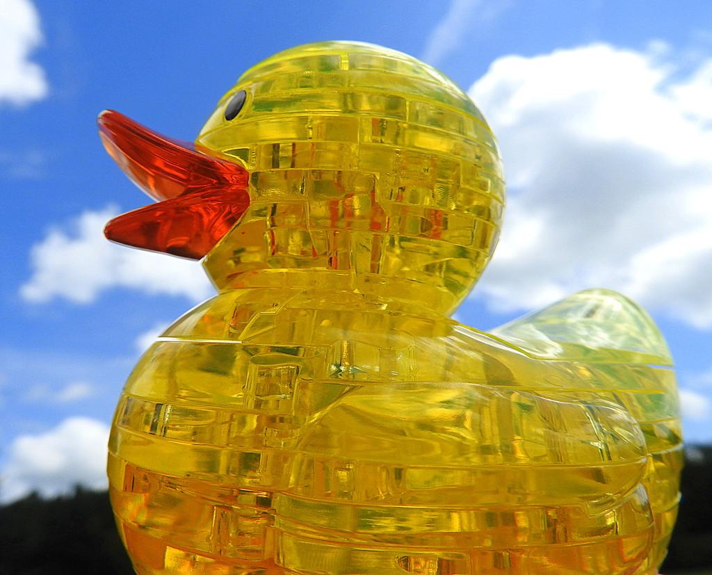Ducky in the sky! by homeschoolmom