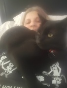 8th Aug 2016 - Smothered by cat