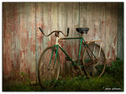 14th Aug 2016 - The old bike..