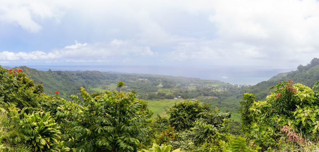 On the Road to Hana by swchappell