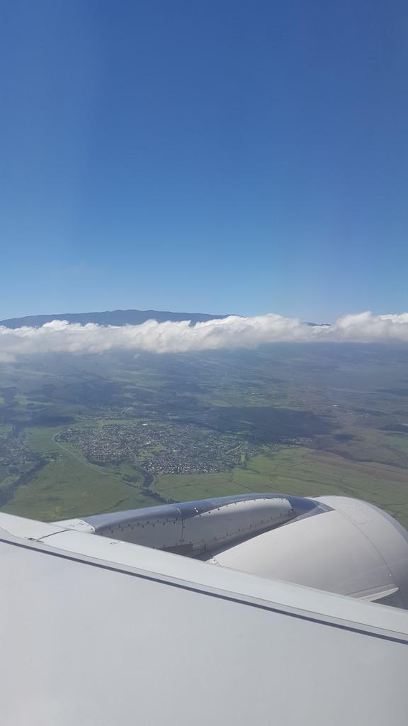 Hello Maui by bambilee