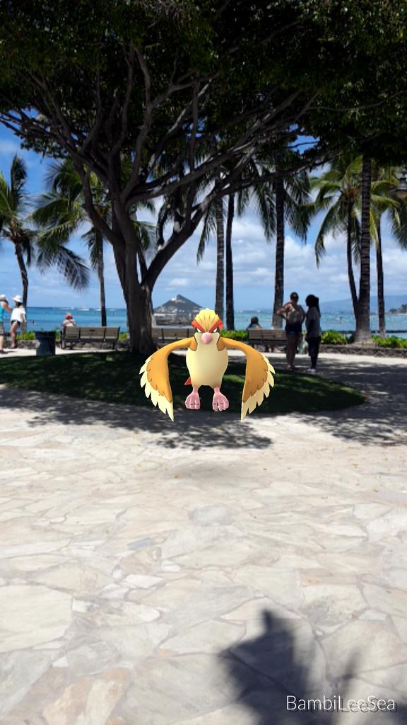 Poke Mango Hawaii by bambilee