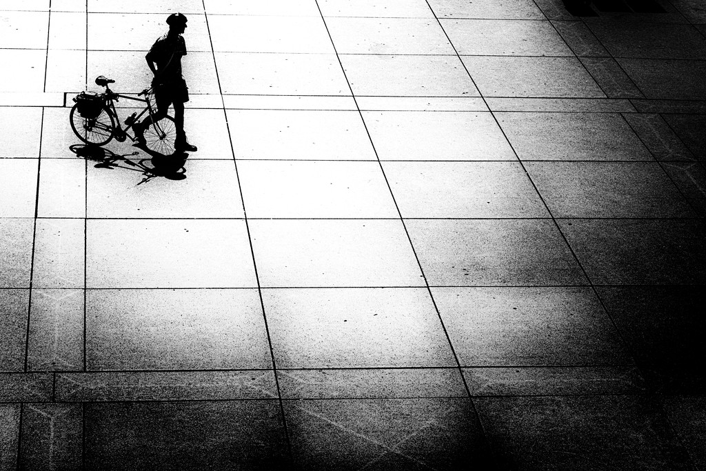 bike walker by northy