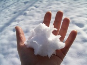 10th Dec 2010 - Snow!