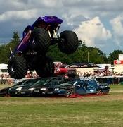 21st Aug 2016 - Purple Monster