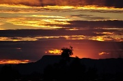 6th Feb 2010 - Sunset in Tuscon