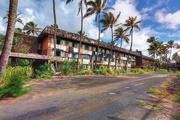 17th Jun 2016 - At the Coco Palms, Kauai, Hawaii