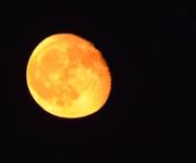 21st Aug 2016 - Moon Rising Higher