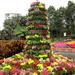 Magnificent flower tower     Brisbane by 777margo