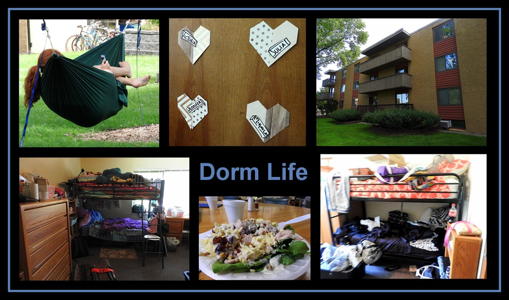Dorm Life by homeschoolmom