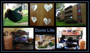 22nd Aug 2016 - Dorm Life