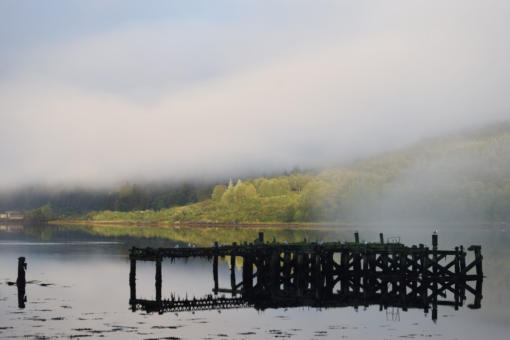 old pier on Loch Long by christophercox