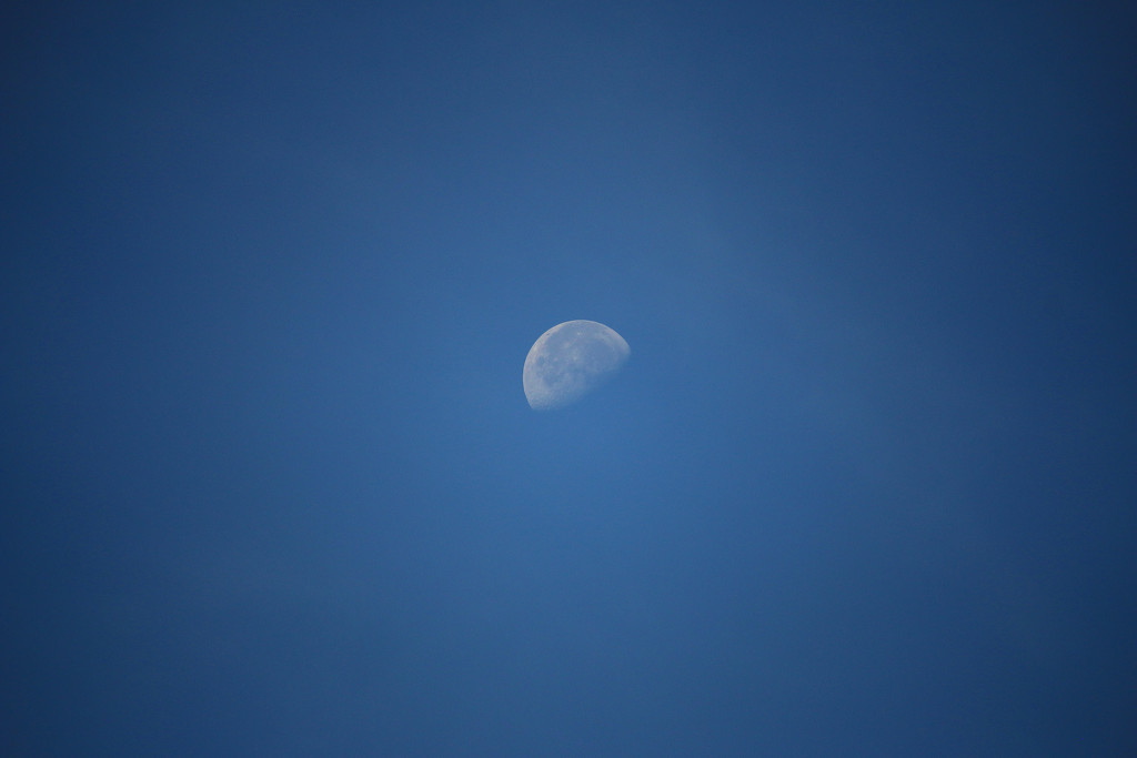 Still a moon at almost noon by nanderson