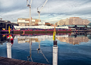 19th Aug 2016 - reflections cranes and Chinese New Year