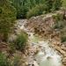 Roaring Fork River by lynne5477