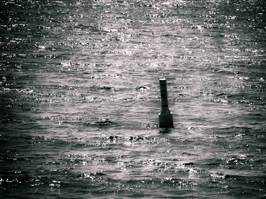 oh buoy by northy