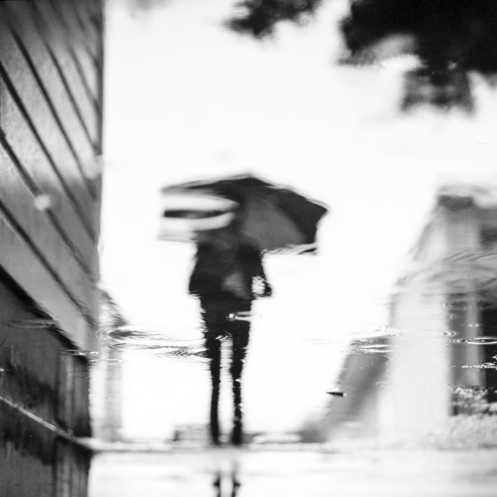 Lets go walking in the rain by spanner