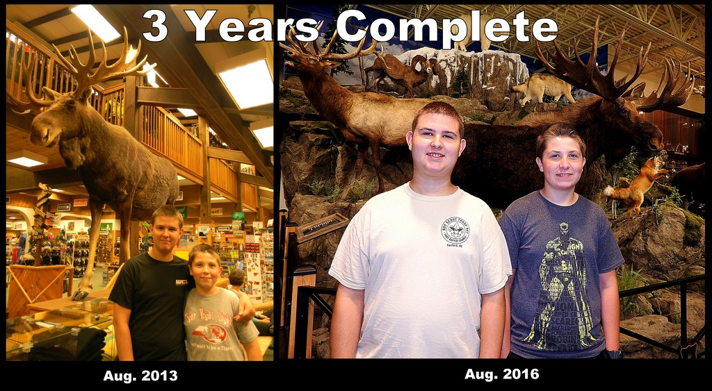 Three Years Complete! by homeschoolmom